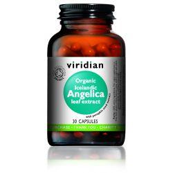 Viridian Organic Icelandic Angelica Leaf Extract - 30s