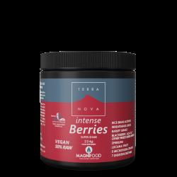Terranova Intense Berries Super-Shake Powder 224G's